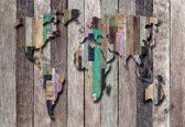 Fotobehang World Map Wood Planks | L - 152.5cm x 104cm | 130g/m2 Vlies