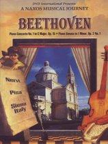 Beethoven: Piano Vol.1 *D*
