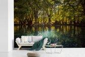Fotobehang vinyl - De zon schijnt door de bomen op het water van het Nationaal park Lago de Camécuaro breedte 600 cm x hoogte 400 cm - Foto print op behang (in 7 formaten beschikbaar)