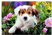 Puzzel hond Baboo 100 stukjes