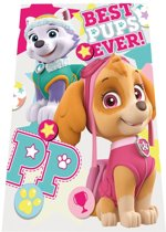 Paw patrol Skye en Everest Fleecedeken 100 x 150