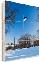 Vlag van Estland op de heuvel in Tallinn Vurenhout met planken 60x90 cm - Foto print op Hout (Wanddecoratie)