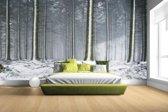 Besneeuwde bomen in de winter Fotobehang 380x265