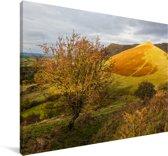 Geel-gekleurde foto van het landschap in het Nationaal park Brecon Beacons Canvas 140x90 cm - Foto print op Canvas schilderij (Wanddecoratie woonkamer / slaapkamer)