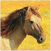 Canvas Schilderij Paard Geel
