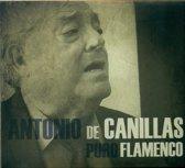 Pure Flamenco