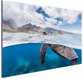 Schildpad bij eiland Aluminium 30x20 cm - Foto print op Aluminium (metaal wanddecoratie)
