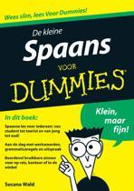 Voor Dummies - De kleine Spaans voor Dummies
