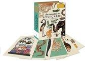 Animalium - set van 50 wenskaarten - Dieren