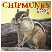 Chipmunks Kalender 2019