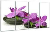 Glasschilderij Orchidee   Paars, Wit   160x80cm 4Luik   Foto print op Glas    F005796