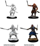 Dungeons and Dragons Nolzur's Marvelous Miniatures: Bandits