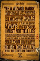 Poster Harry Potter Quotes, Yer a Wizard