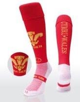 WackySox Wales Rood 41-46