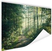 Een dichtbegroeid bos Poster 180x120 cm - Foto print op Poster (wanddecoratie woonkamer / slaapkamer) XXL / Groot formaat!