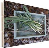 Prei in een houten kist met bladeren op de achtergrond Vurenhout met planken 160x120 cm - Foto print op Hout (Wanddecoratie) XXL / Groot formaat!