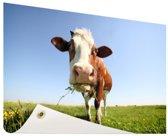 Close-up koe Tuinposter 60x40 cm - klein - Tuindoek / Buitencanvas / Schilderijen voor buiten (tuin decoratie)