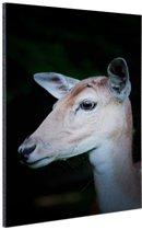 Hert close-up Aluminium 80x120 cm - Foto print op Aluminium (metaal wanddecoratie)