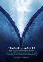 Amour Des Moules, L'
