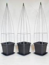 3x plantensteunen draadzuilen piramide + pot en waterschotel
