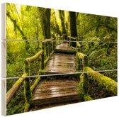 Mooi regenwoud en jungle Hout 80x60 cm - Foto print op Hout (Wanddecoratie)