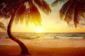 Papermoon Tropical Beach Sunrise Vlies Fotobehang 250x186cm 5-Banen