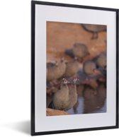 Foto in lijst - Groep helmparelhoenders aan het water fotolijst zwart met witte passe-partout klein 30x40 cm - Poster in lijst (Wanddecoratie woonkamer / slaapkamer)