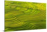 Een indrukwekkende luchtfoto van de rijstvelden in Vietnam Aluminium 60x40 cm - Foto print op Aluminium (metaal wanddecoratie)