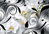 Fotobehang Flowers Orchids Abstract  | XXXL - 416cm x 254cm | 130g/m2 Vlies