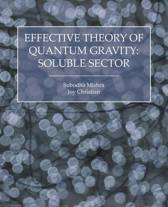Effective Theory of Quantum Gravity
