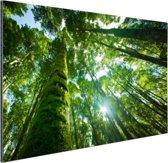 Tropische jungle in Azie Aluminium 90x60 cm - Foto print op Aluminium (metaal wanddecoratie)