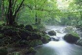 Fotobehang - Bos en rivier - 372x260 cm. Vliesbehang 150 grams A-Kwaliteit. Art. F009.35