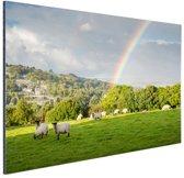 Schapen onder levendige regenboog Aluminium 90x60 cm - Foto print op Aluminium (metaal wanddecoratie)