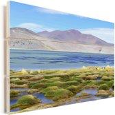 Kleurrijk meer in Nationaal park Nevado Tres Cruces in Chili Vurenhout met planken 120x80 cm - Foto print op Hout (Wanddecoratie)