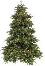 Triumph Tree kunstkerstboom led deluxe abies nordmann maat in cm: 230 x 160 groen 496 lampjes met warmwit led