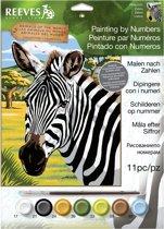 Schilderen op nummer - zebra