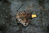 Fotobehang Jaguar Leopard 3D | XL - 208cm x 146cm | 130g/m2 Vlies