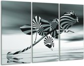 Glas schilderij Bloem, Roos | Grijs | 120x80cm 3Luik | Foto print op Glas |  F006292