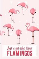 Just A Girl Who Loves Flamingos: Cute Pink Flamingo Blank Lined Note Book