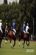 2020: Diary, Weekly Planner, Organiser, Year 2020 - Week Per View. Gift for Polo Player