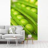 Fotobehang vinyl - Identieke erwten in peulen breedte 215 cm x hoogte 320 cm - Foto print op behang (in 7 formaten beschikbaar)
