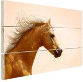 Welsh pony foto afdruk Hout 30x20 cm - klein - Foto print op Hout (Wanddecoratie)
