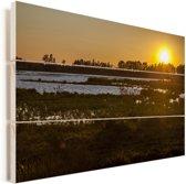 Zonsondergang bij het Nationaal park Doñana in Spanje Vurenhout met planken 30x20 cm - klein - Foto print op Hout (Wanddecoratie)