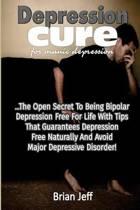 Depression Cure for Manic Depression