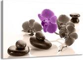 Canvas schilderij Orchidee | Paars, Grijs, Wit | 140x90cm 1Luik