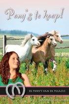 De pony's van de Pegasus 12 - Pony's te koop!