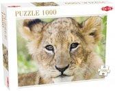 Leeuw - Legpuzzel - 1000 Stukjes