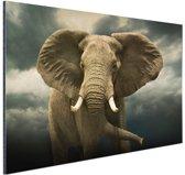 Afrikaanse olifant donkere wolken Aluminium 120x80 cm - Foto print op Aluminium (metaal wanddecoratie)