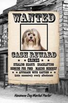 Havanese Dog Wanted Poster