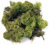 Decoratie mos groen - Cladoniaceae - 100 gram